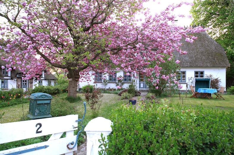 """Frühling auf """"Ünner de Eeken"""""""